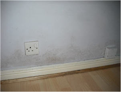 Condensation Damaged Wall